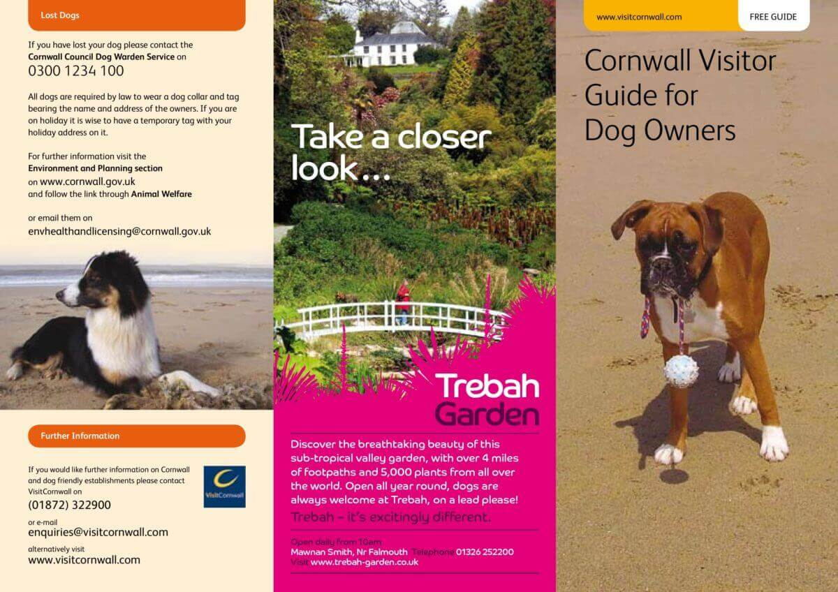 Cornwall Guide for Dog Owners